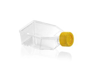 细胞培养瓶 50ml
